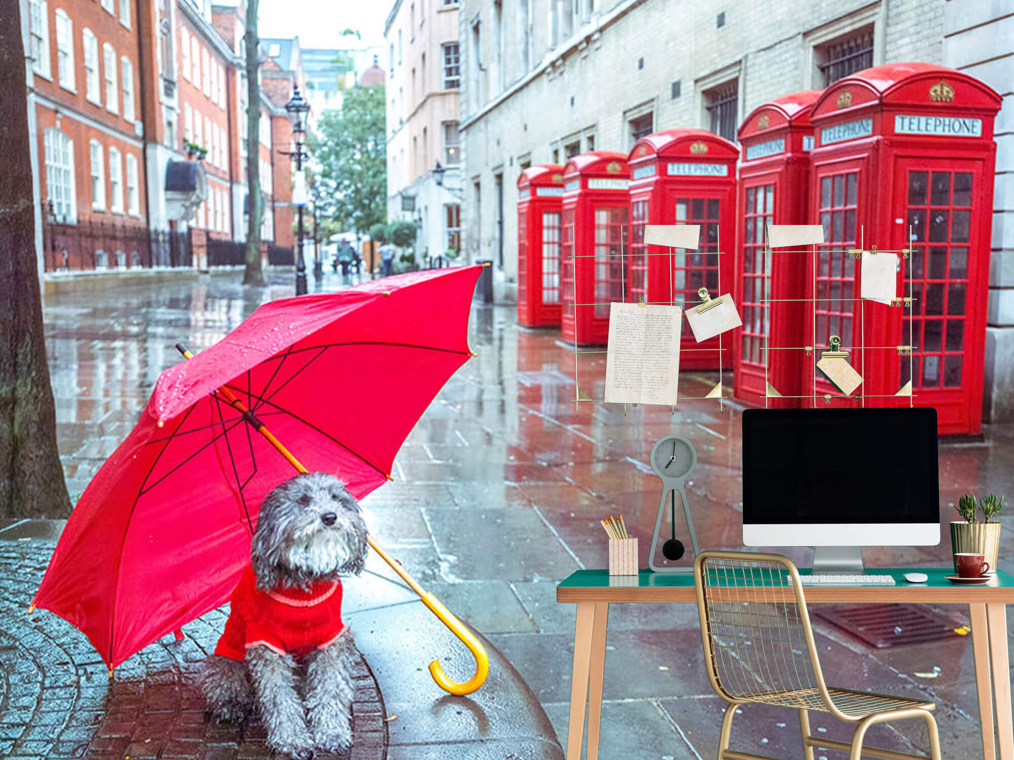 Hond met paraplu 7