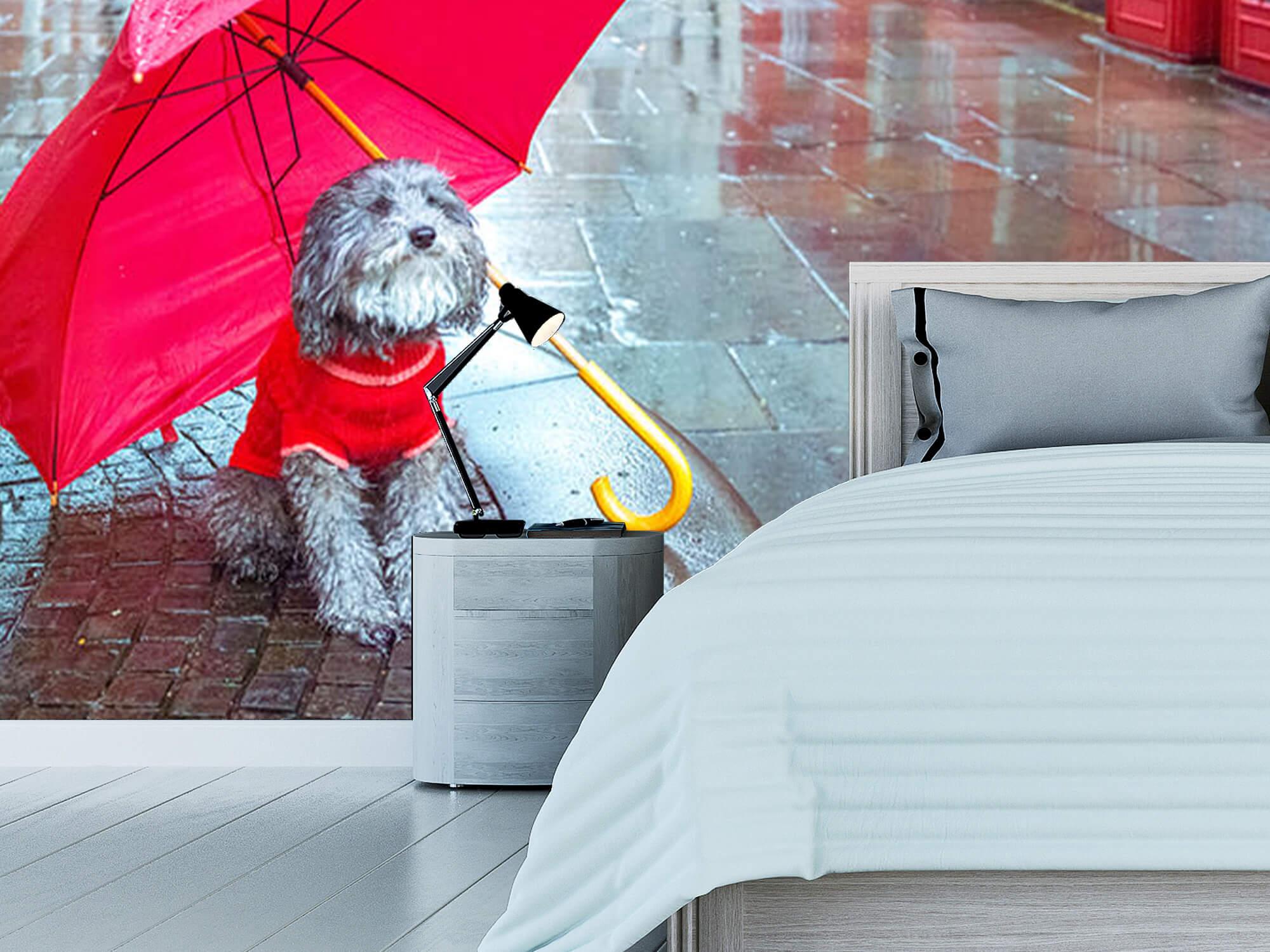 Hond met paraplu 11