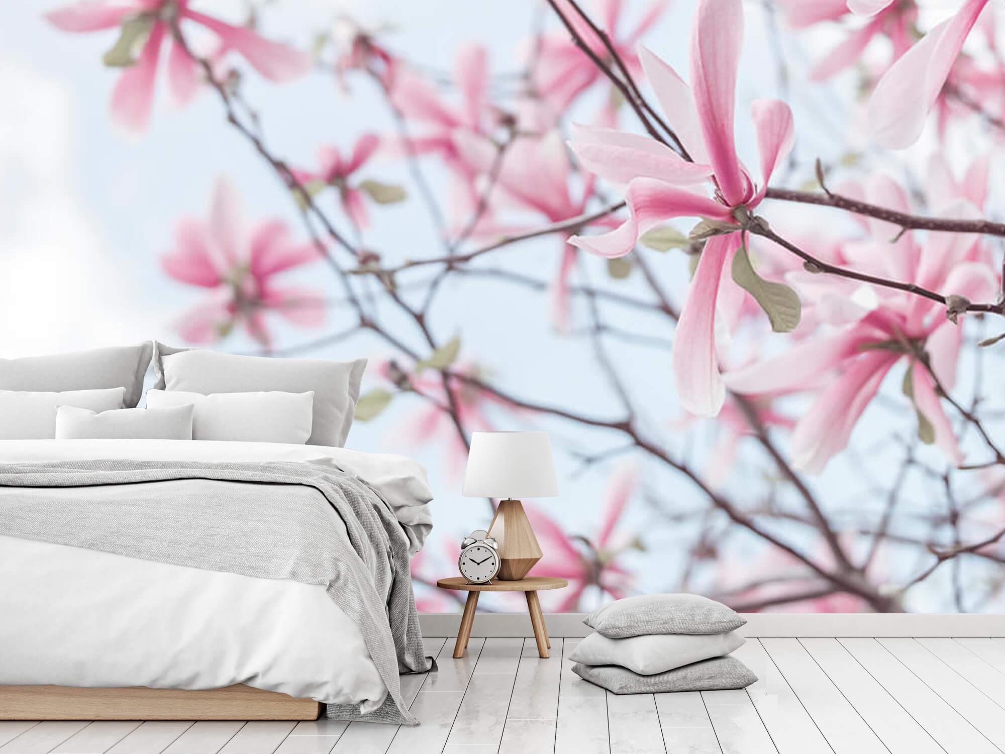Magnolia 5