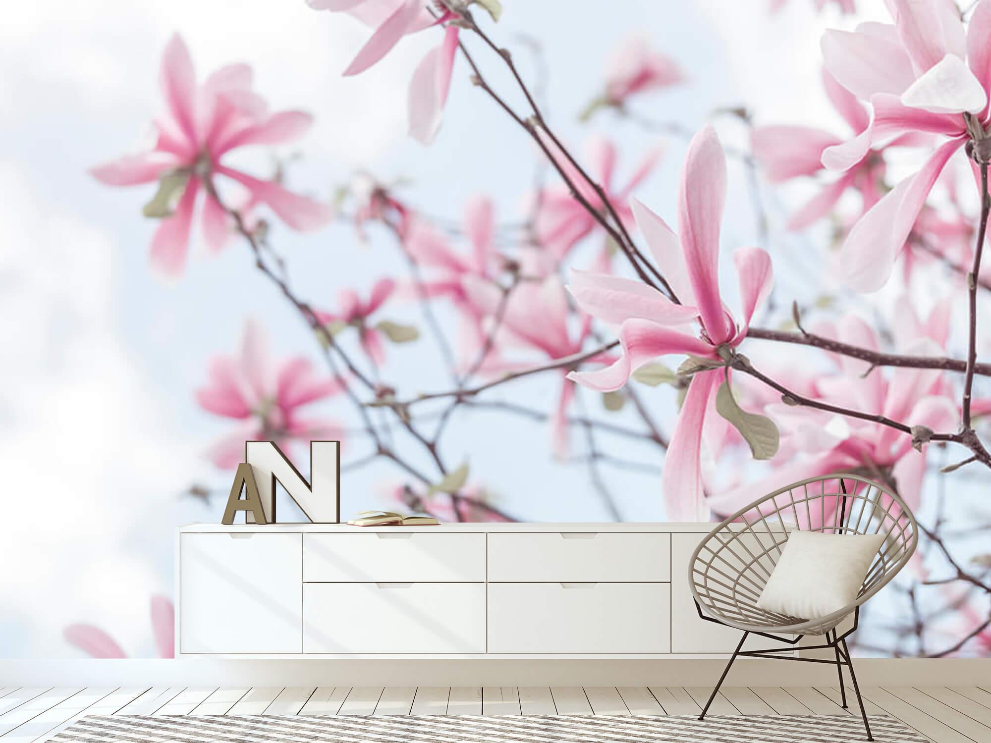 Magnolia 15