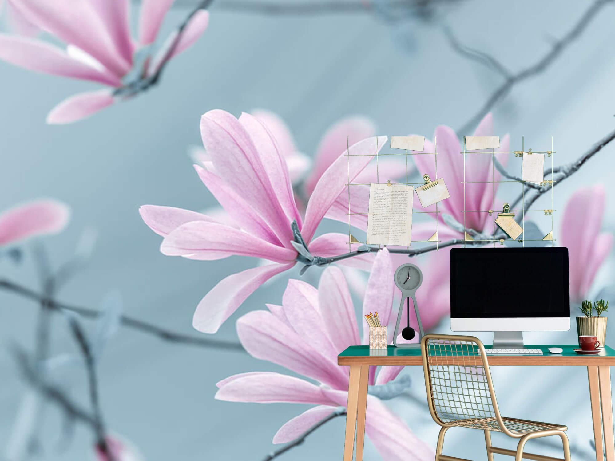 Magnolia bloemen 4