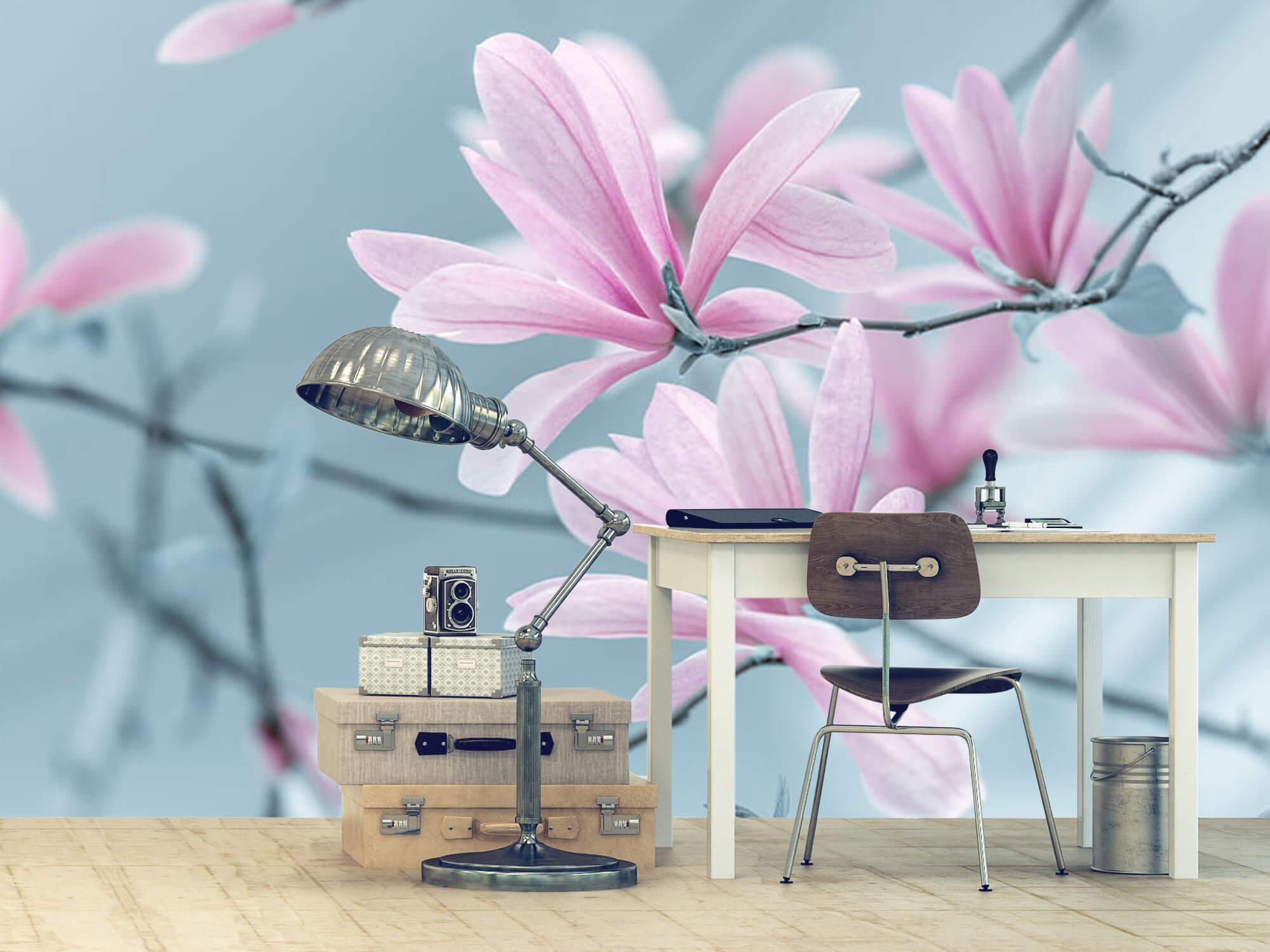 Magnolia bloemen 6