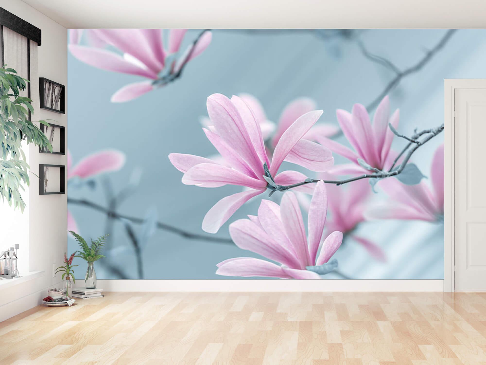 Magnolia bloemen 8