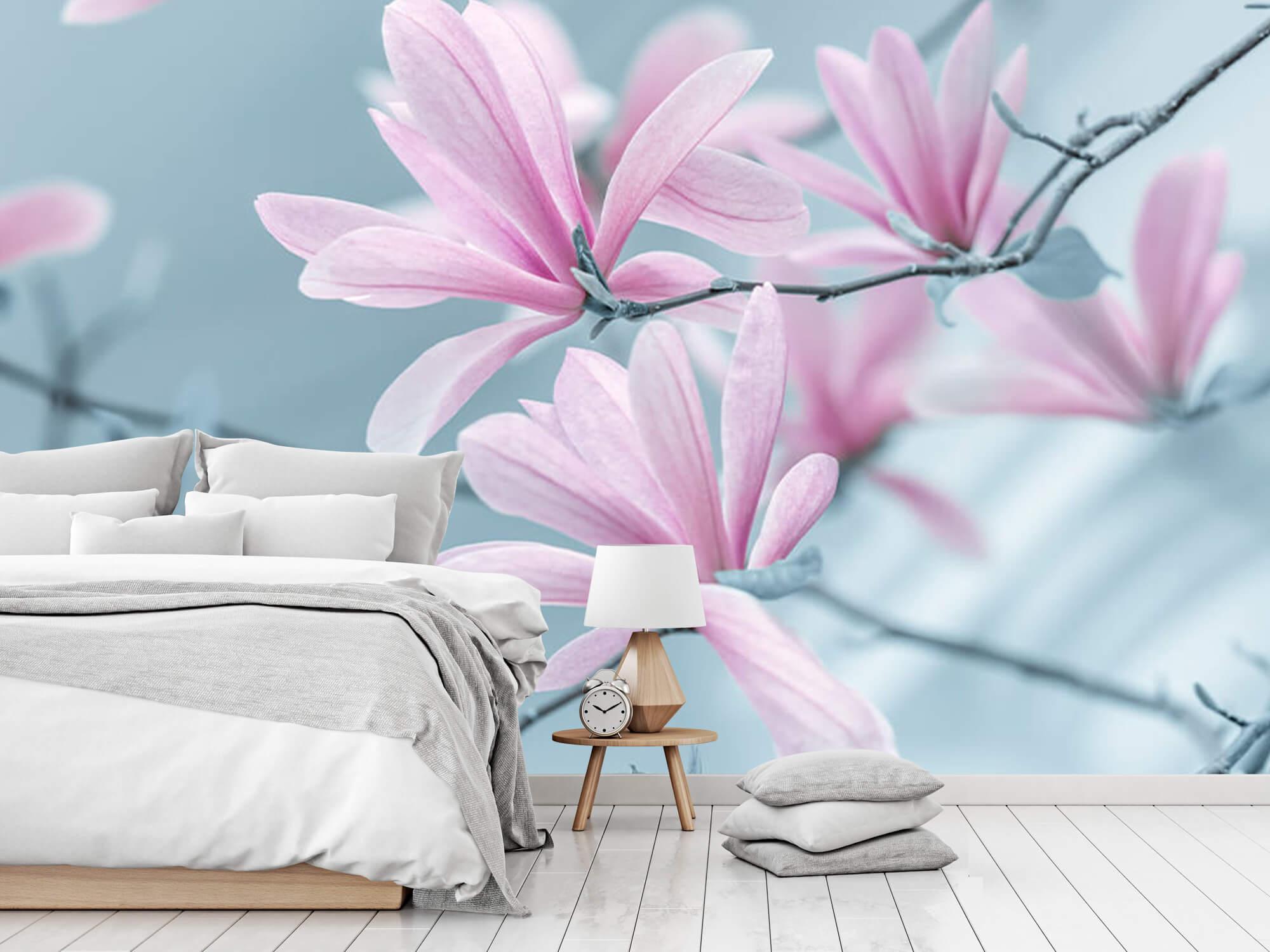 Magnolia bloemen 10
