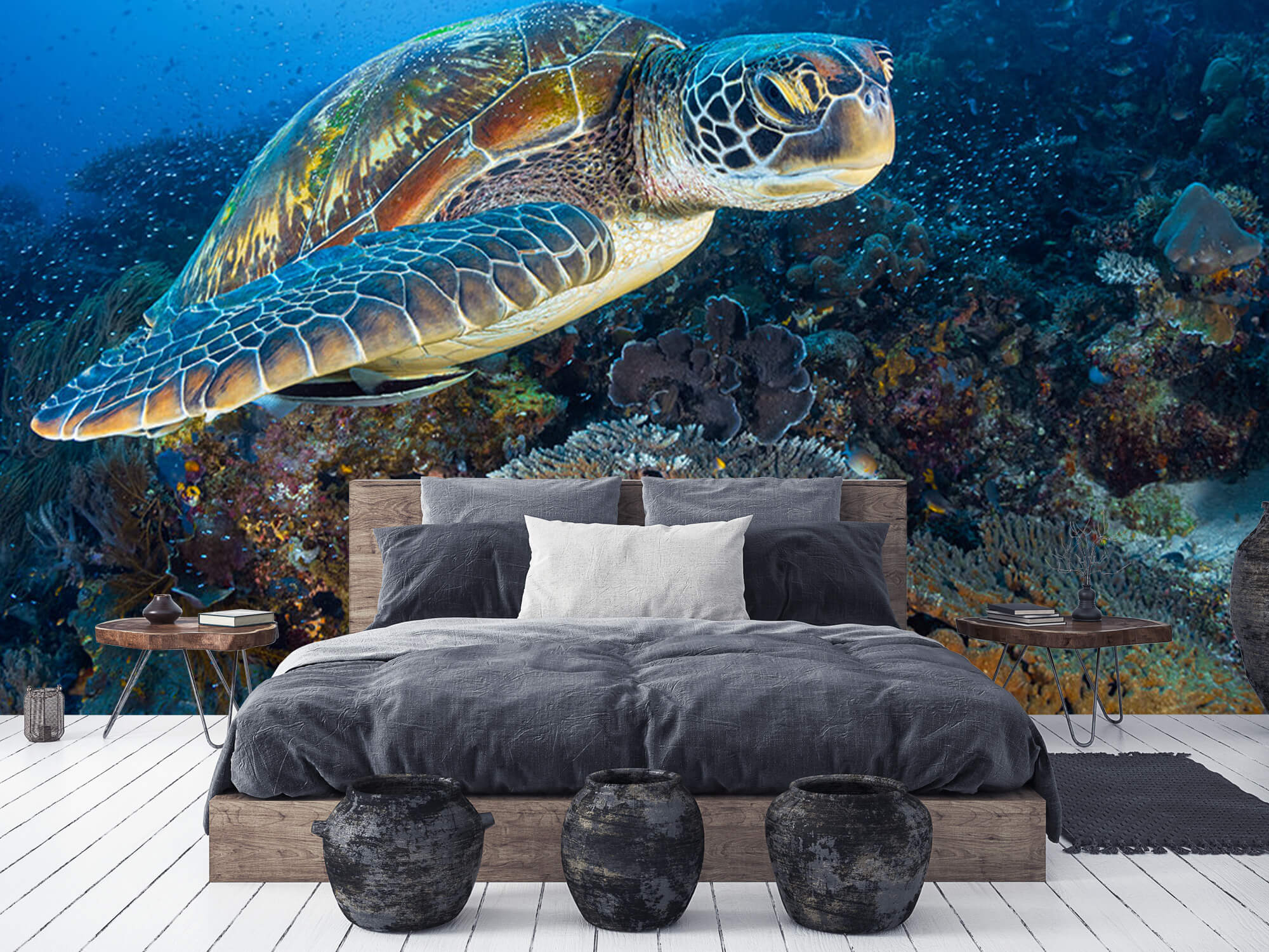 Green sea turtle from Raja Ampat 8