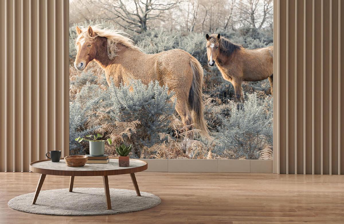 wallpaper Wilde paarden in een veld 4