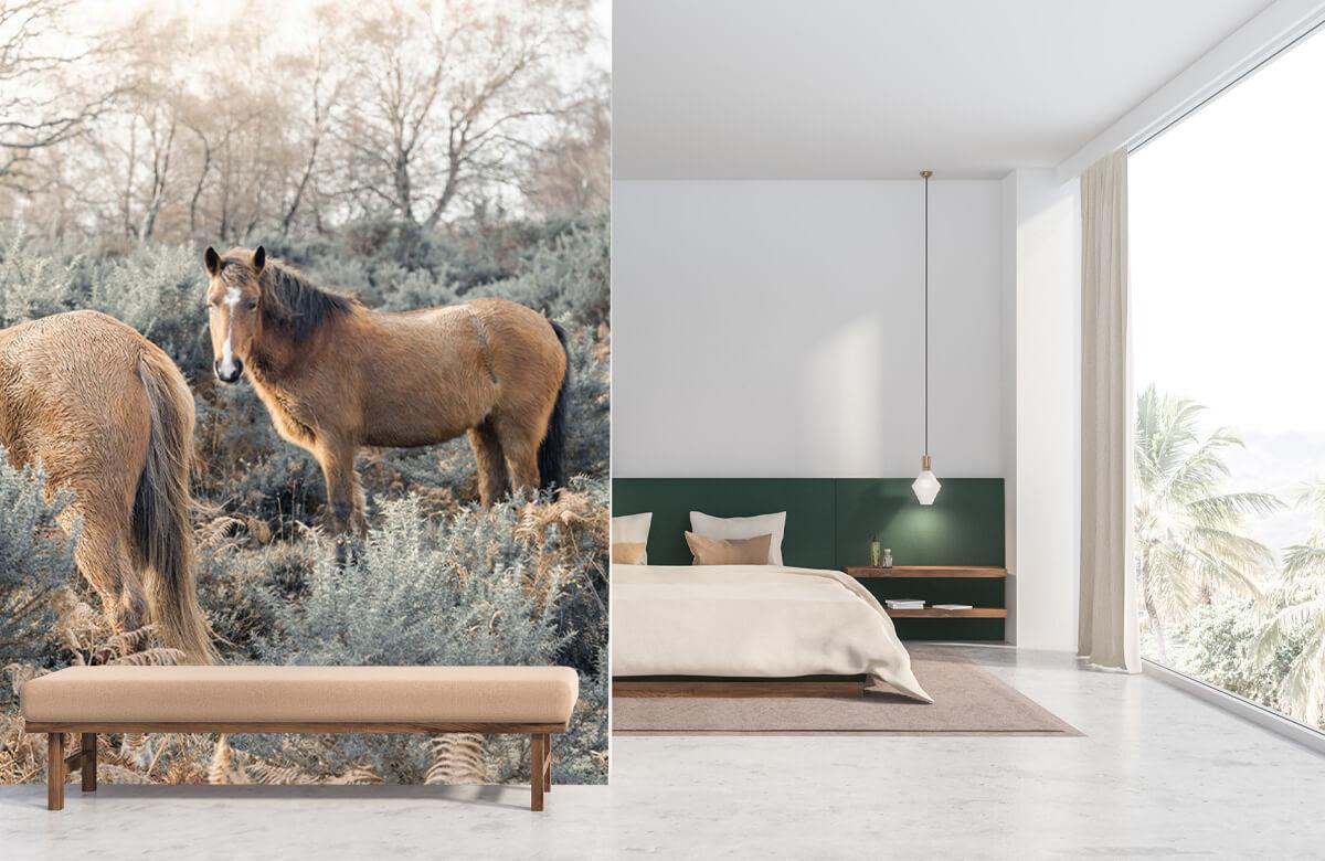 wallpaper Wilde paarden in een veld 8