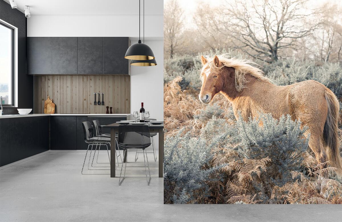wallpaper Wilde paarden in een veld 9