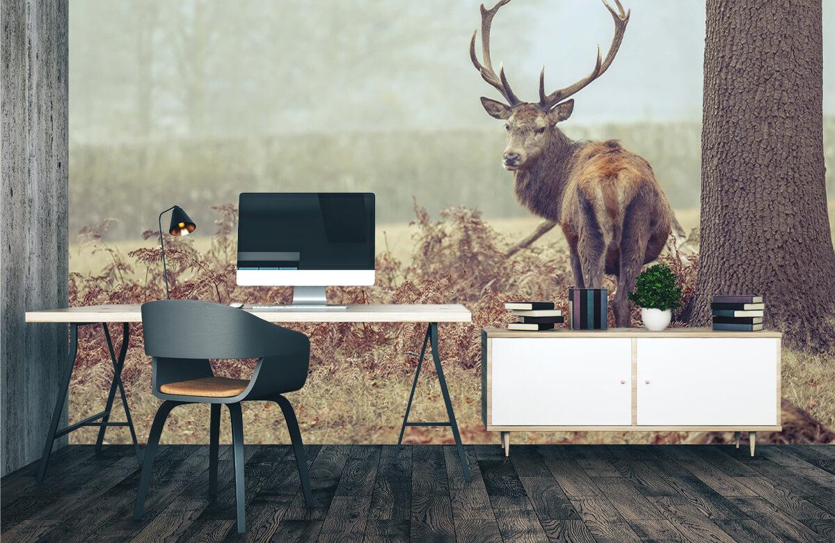 wallpaper Hert in de mist 1