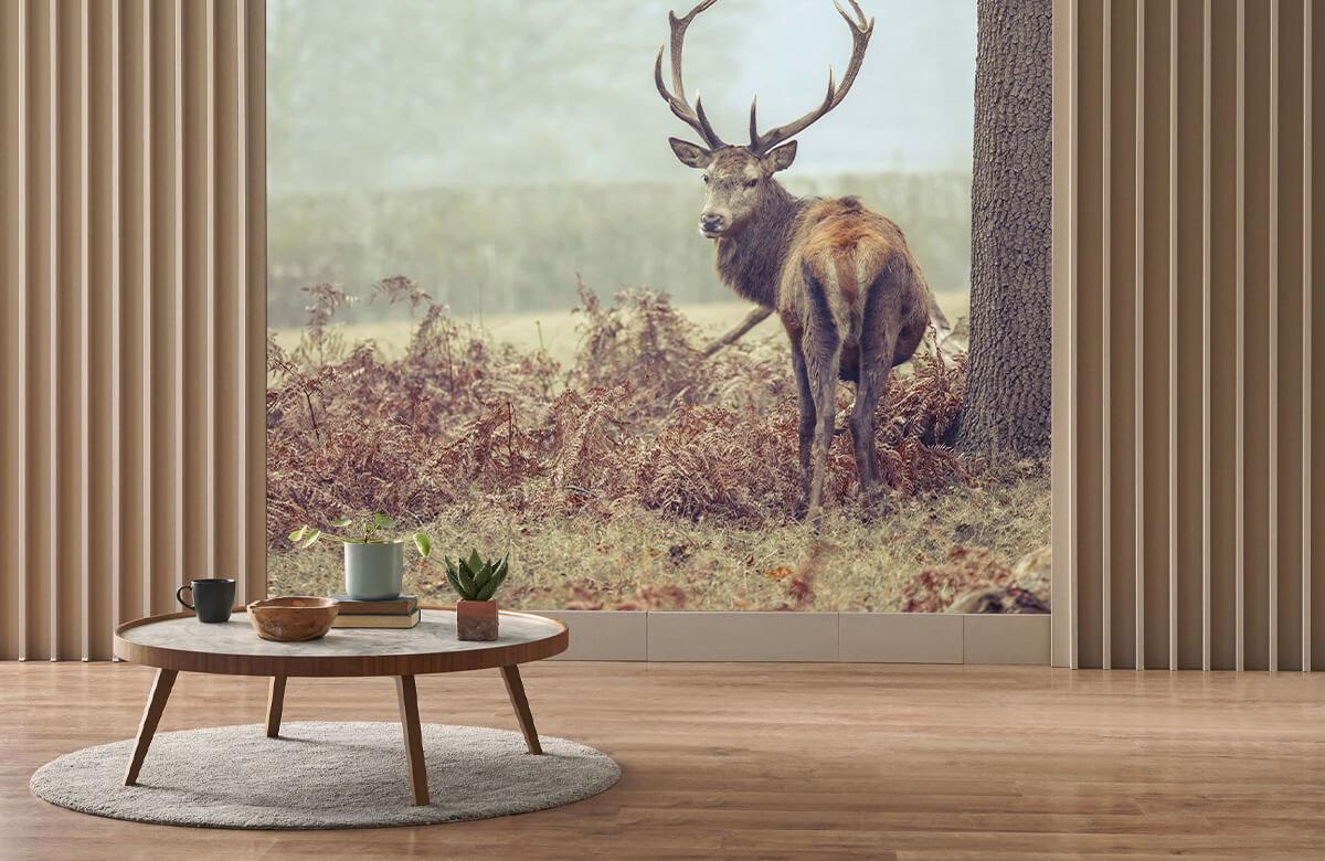 wallpaper Hert in de mist 2