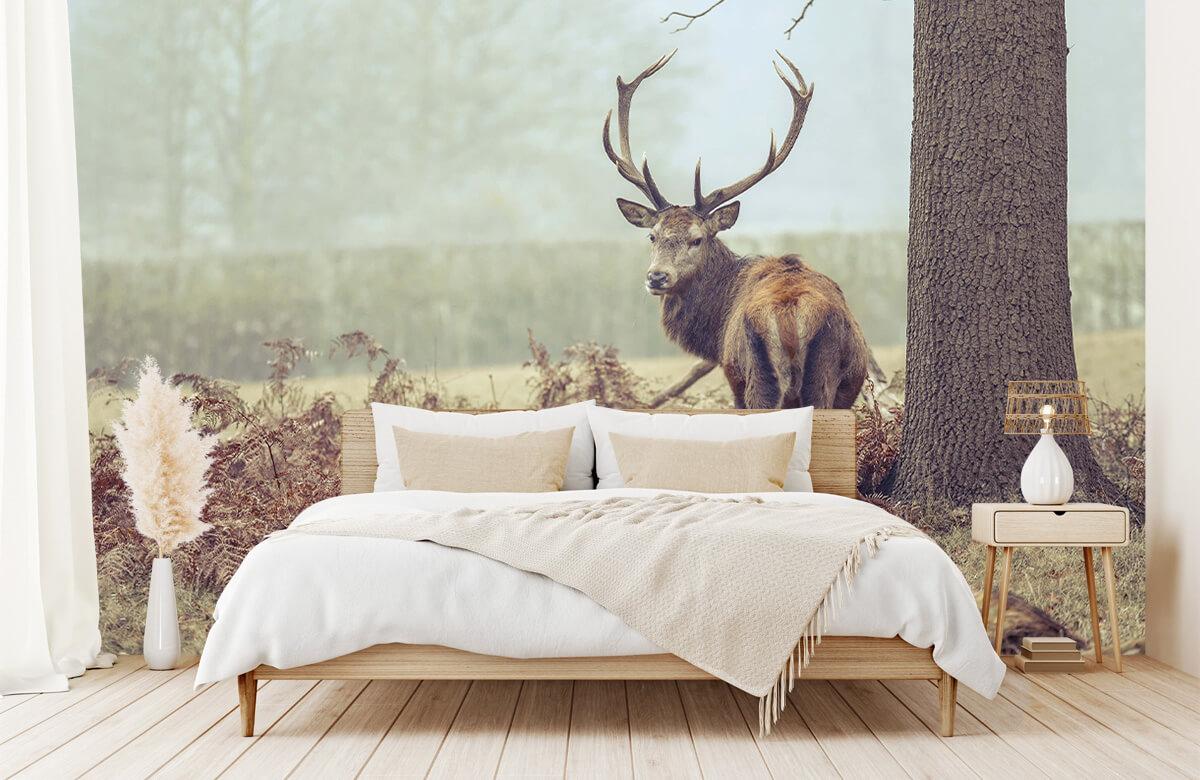 wallpaper Hert in de mist 5