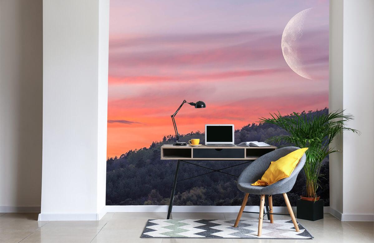 wallpaper De maan 4