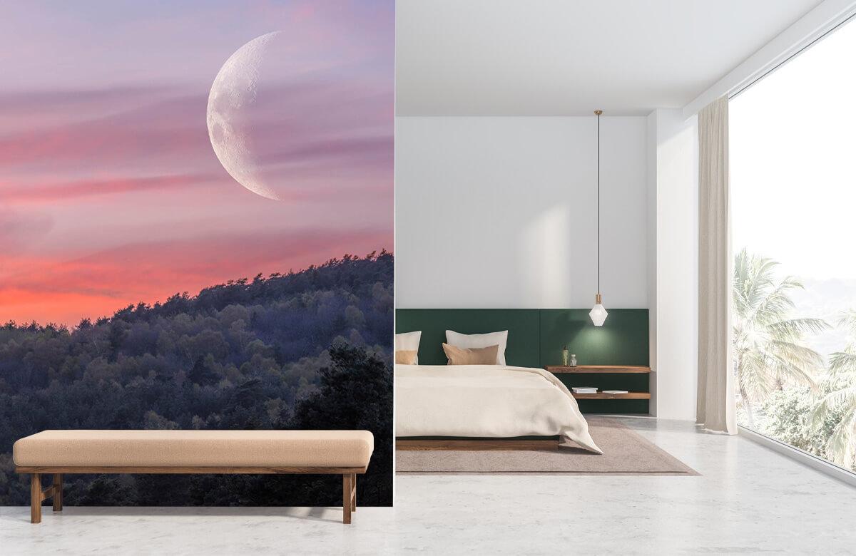 wallpaper De maan 8