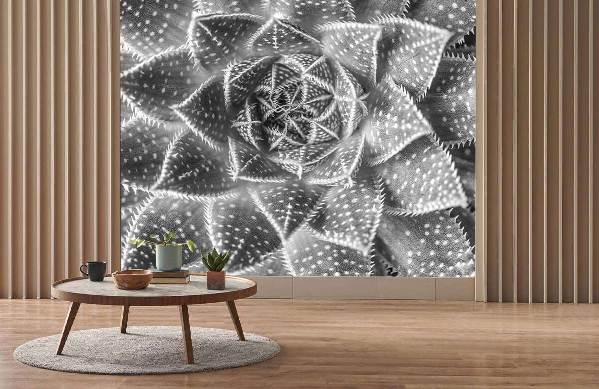 wallpaper Close-up vetplant in zwart-wit 5