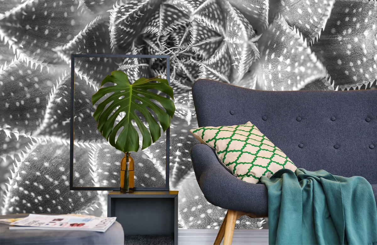 wallpaper Close-up vetplant in zwart-wit 10