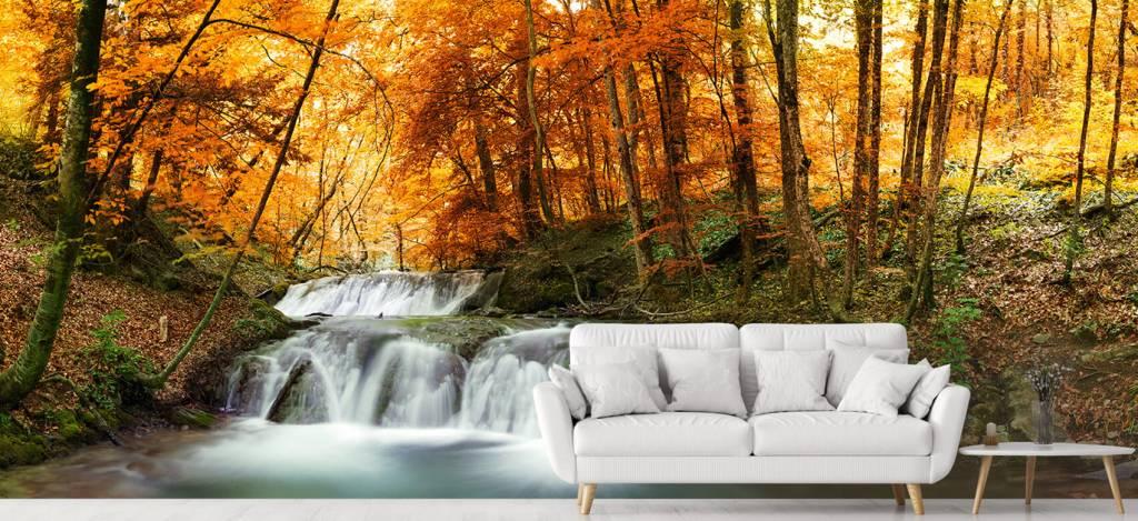 Watervallen - Waterval in de herfst - Vergaderruimte 1