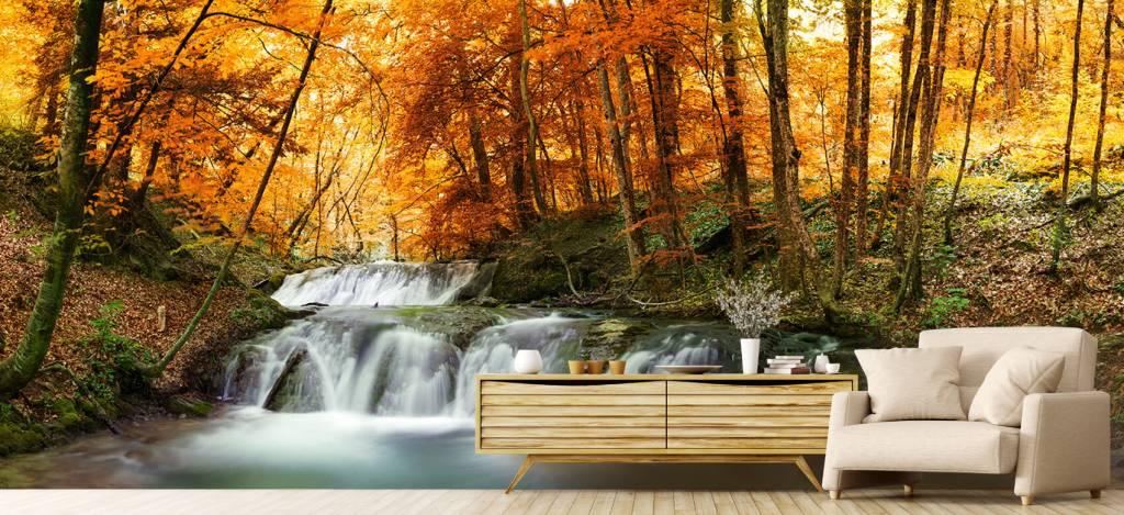 Watervallen - Waterval in de herfst - Vergaderruimte 2