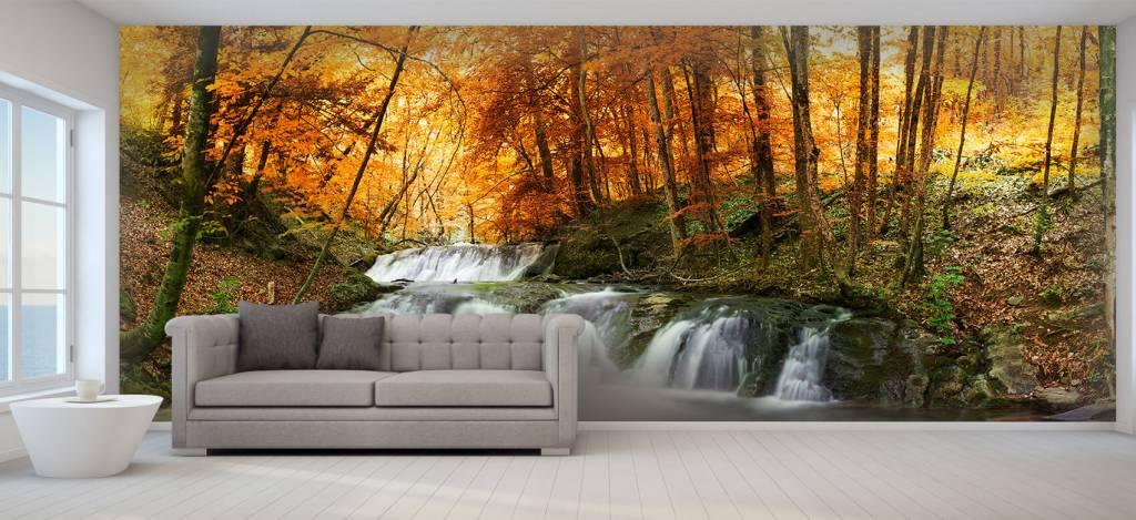 Watervallen - Waterval in de herfst - Vergaderruimte 5