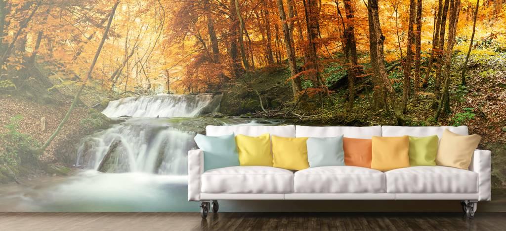 Watervallen - Waterval in de herfst - Vergaderruimte 6