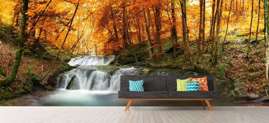 Watervallen - Waterval in de herfst - Vergaderruimte 7