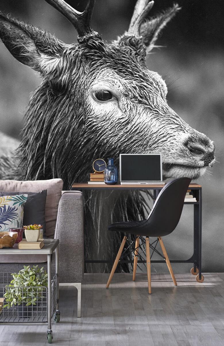 Hert portret in zwart-wit 10