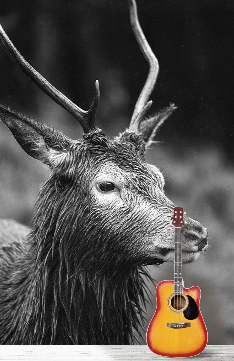 Hert portret in zwart-wit 13