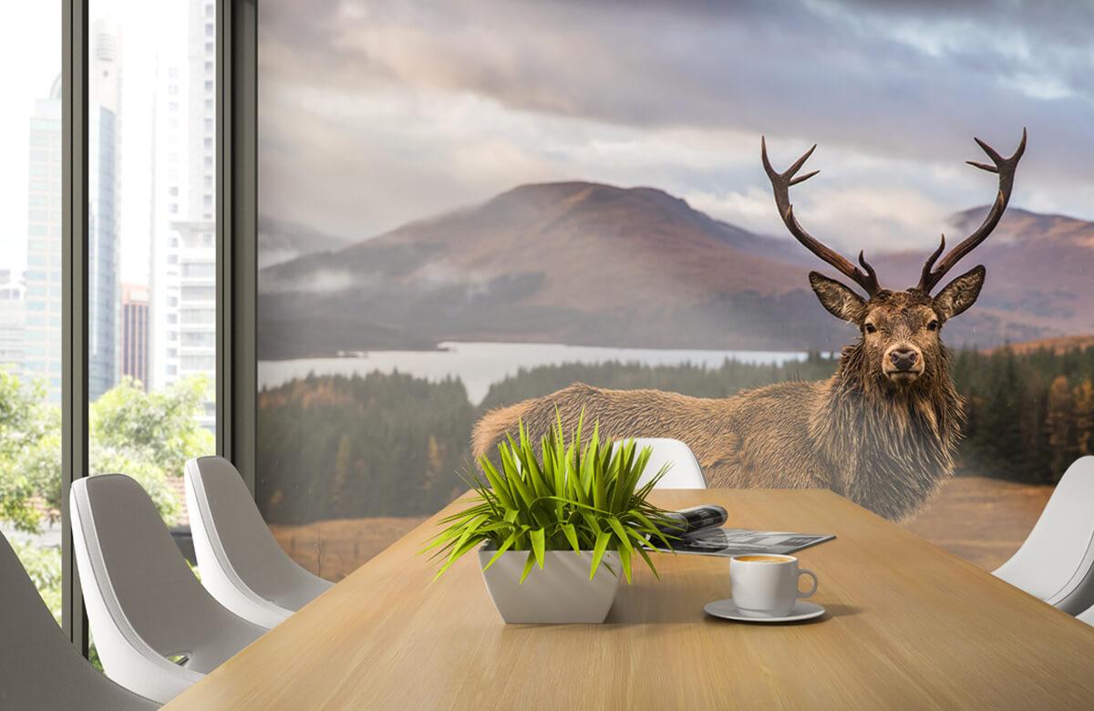 Hert voor de bergen 7