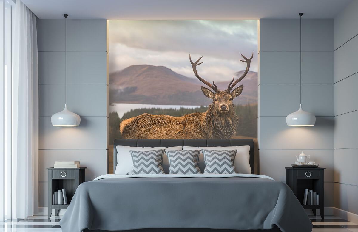 Hert voor de bergen 10