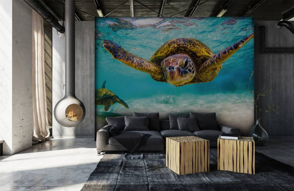 Zeedieren - Zeeschildpad in de oceaan - Slaapkamer 6