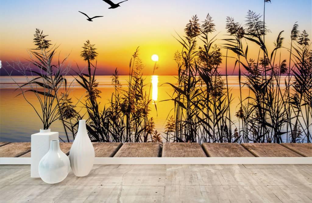Meertjes en Wateren - Zonsondergang op het meer - Woonkamer 8